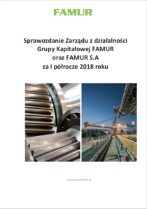 Individual annual report of FAMUR SA for the year 2017