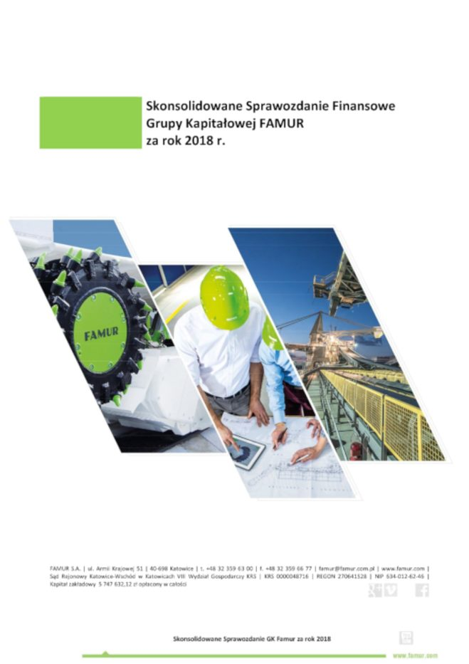 CONSOLIDATED ANNUAL REPORT OF FAMUR GROUP FOR THE YEAR 2018